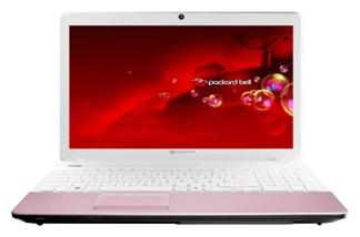 Packard Bell Ноутбук Packard Bell EasyNote TS45 AMD