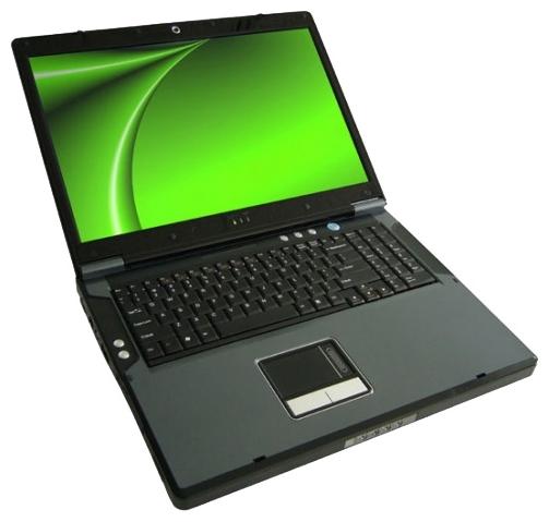 Eurocom D900F Panther Server